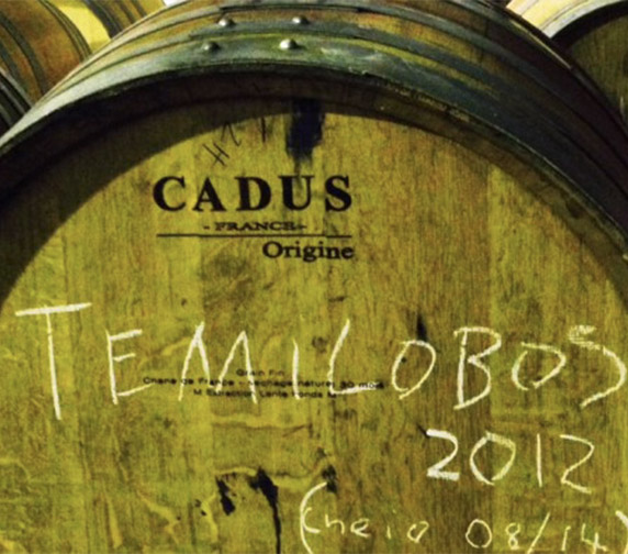 Temilobos Barrell 2012